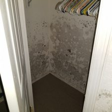 Mold in Closet, Mobile Home, Phoenix AZ, Severe Water Damage
