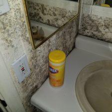 Severe Mold, Bathroom, Vanity, Phoenix AZ