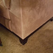 Carpet-Furniture-Walls-Baseboard-Covered-in-Mold-Chandler-AZ-Water-Damage-and-Mold-Remediation