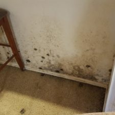 Category-3-Water-Damage-and-Black-Mold-Chandler-AZ