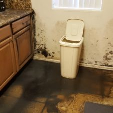 Sewage-Backup-in-Kitchen-Water-Damage-Restoration-Mold-Remediation-Chandler-AZ