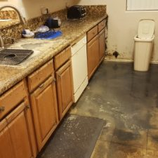 Standing-Black-Water-in-Kitchen-After-Sewer-Backup-Came-Through-Sink-Chandler-AZ-Mold-Remediation
