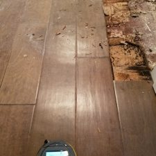 Wet Wood Floor, Mold Damage Remediation, Phoenix Arizona