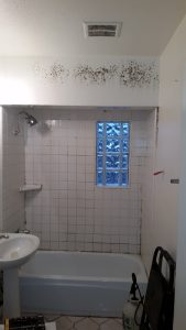 Arizona Total Home Restoration - Mesa, AZ - Mold in your home - Black mold on tub tiles