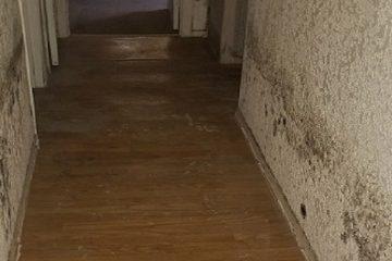Mold Problems - Black Mold in Hallway of Home - ATH Restoration - Scottsdale AZ