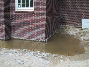 Arizona Total Home Restoration - Mesa, AZ - Standing water outside foundation can cause mold in your home