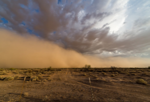 Arizona Monsoon Season - Arizona Total Home Restoration - Gilbert, AZ - Desert Dust Storm