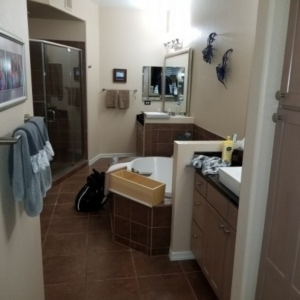 Before Picture, Bathroom, Mold Remediation, Scottsdale AZ