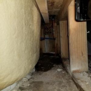 Built-in bathtub leak, Scottsdale Arizona, Mold