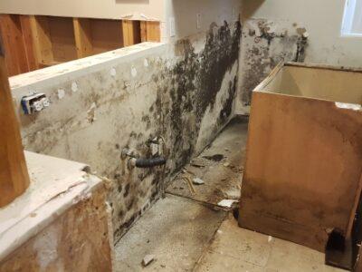 Behind-the-Kitchen-Cabinets-Demolition-CAT3-Black-Water-Damage-Chandler-AZ