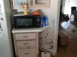 Mold Growth on Bedroom Walls from Water Supply Line Leak - Phoenix, AZ