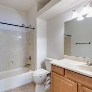 Mold-Remediation-Chandler-AZ-Guest-Bath-Remodel
