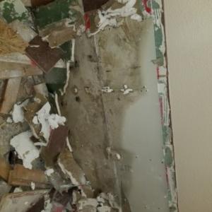 Mold Removal. Behind Tile, Bathroom, Scottsdale AZ
