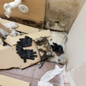 Scottsdale AZ Condo, Drain Line Leak, Mold Removal, Bathroom