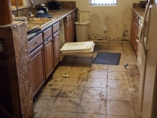 Standing-Black-Water-Cleanup-In-Process-Mold-Remediation-Chandler-AZ