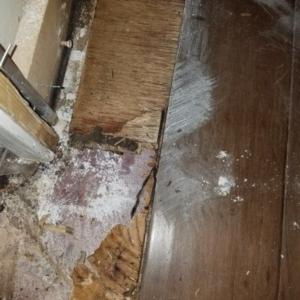 Toilet-Flange-Leak-Phoenix-AZ-Wood-Floor-cupping-CAT-3-5