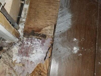 Toilet Flange Leak CAT 3 Phoenix AZ