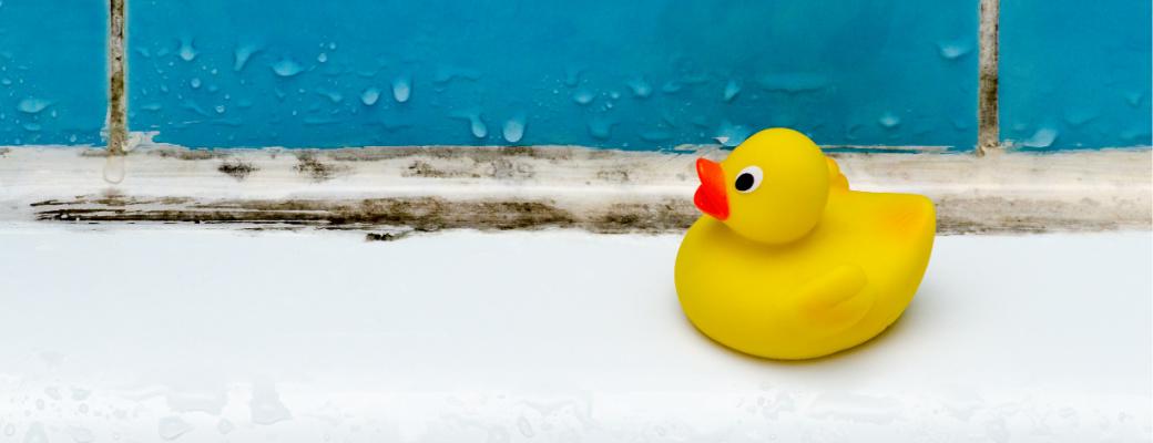 Mold Prevention in the Bathrub and Shower - Mesa AZ - Arizona Total Home Restoration 1040x400