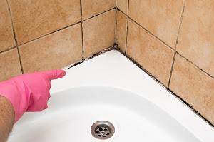 Bleach to Kill Mold -Black Mold in Corner of Tub and Tile - Arizona Total Home Restoration - Gilbert, AZ