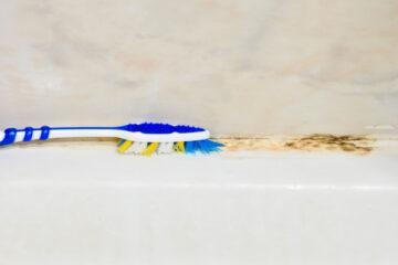 Should I Use Bleach to Kill Mold? - Arizona Total Home Restoration